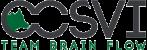 CCSVI - Team Brain Flow